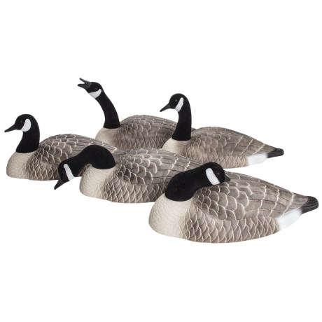 Hardcore Canada Goose Shell Touchdown Decoys - 12-Pack
