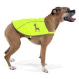 alcott Essentials Visibility Dog Vest - Large