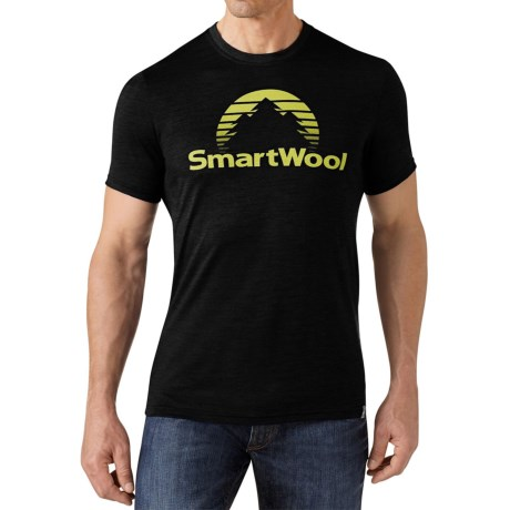 SmartWool New Day Sun T-Shirt - Merino Wool, Slim Fit, Short Sleeve (For Men)
