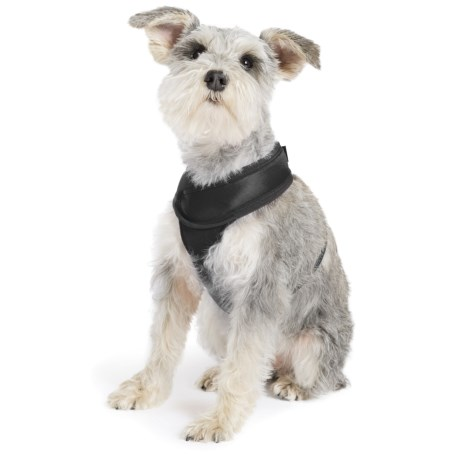 Gold Paw Crossover Harness