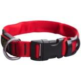 Nite Ize Nite Dawg LED Dog Collar