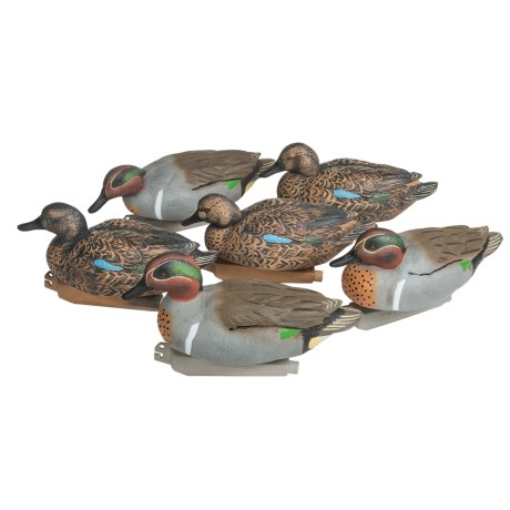 Banded Green Wing Teal Decoys - 6-Pack