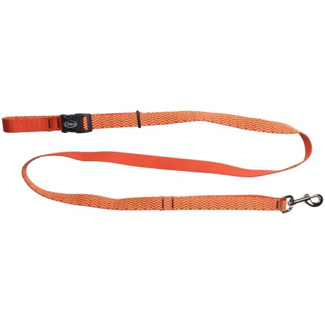 Chaco Webbed Dog Leash - 6'