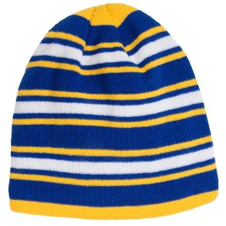 Grand Sierra Stripe Knit Beanie - Fleece Lined (For Big Boys)