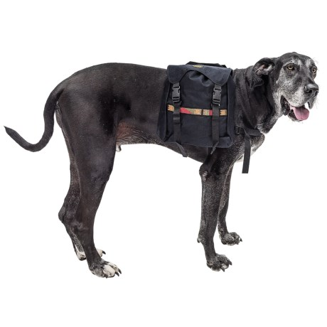Bison Designs Long Haul Dog Pack - Large, Extra-Large