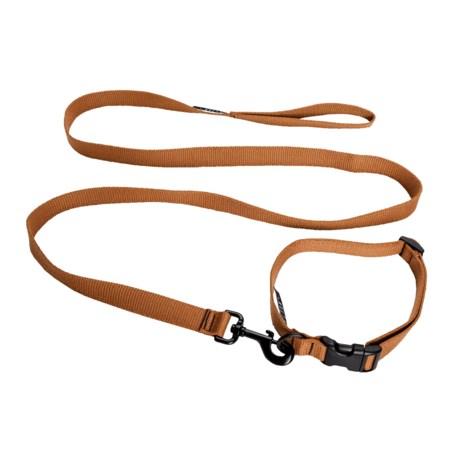 Bison Designs Solid Dog Collar and Lead Set