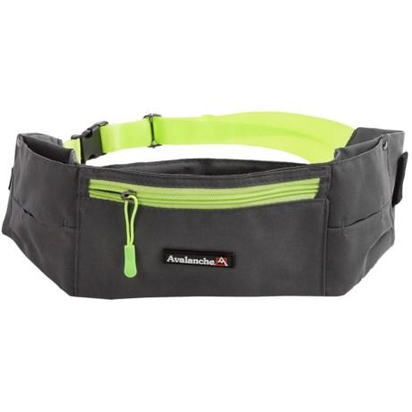 Avalanche Dog-Walking Belt