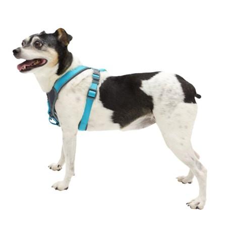 Avalanche Reflective Padded Dog Harness