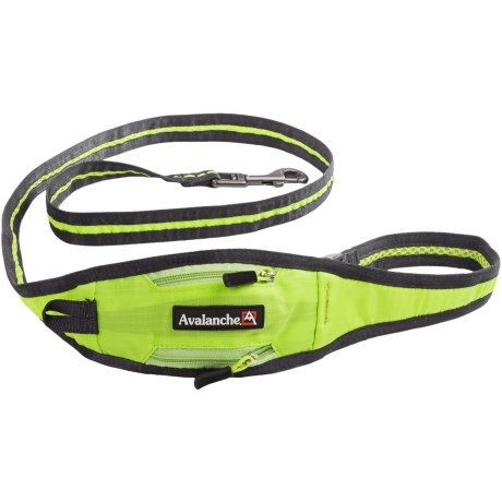Avalanche 3-in-1 Dog Leash