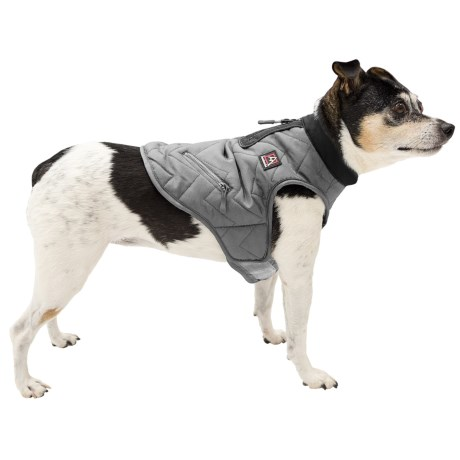 Avalanche Winter Dog Jacket - Insulated