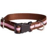 Harry Barker Eton Dog Collar - Recycled PET