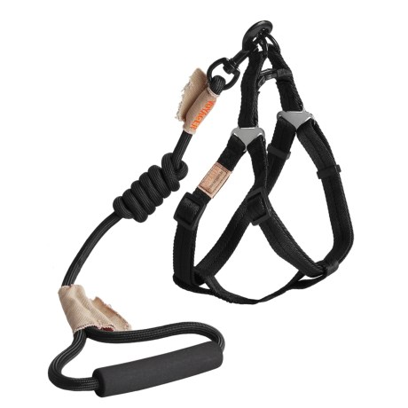 Best Pet Round Leash and Harness Set - Medium