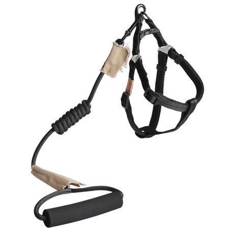 Best Pet Round Leash and Harness Set - Small