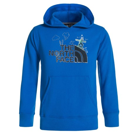 The North Face Logowear Hoodie (For Little and Big Boys)