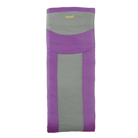 Eureka 45°F Lightning Bug Sleeping Bag - Rectangular (For Kids)
