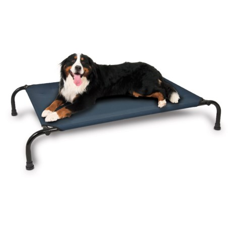 "Aspen Pet Elevated Dog Bed - Large, 43x32"""