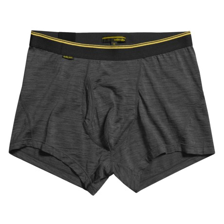 Icebreaker Beast 150 Boxer Briefs with Fly - Merino Wool Underwear (For Men)