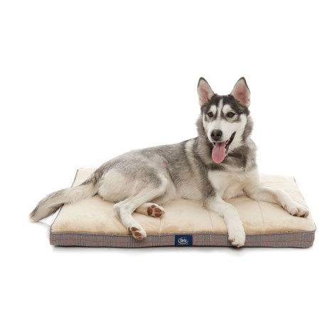 Serta Orthopedic Foam Crate Mat - Medium, 22x30""