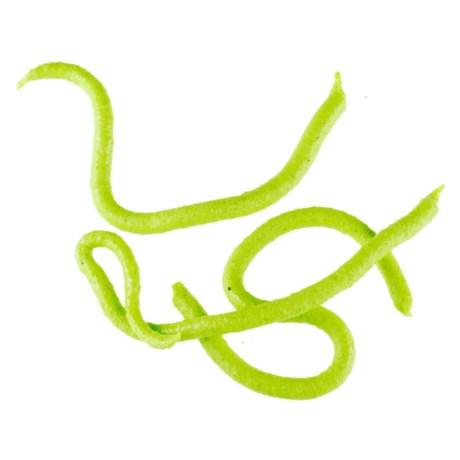 Berkley Gulp! Earthworm
