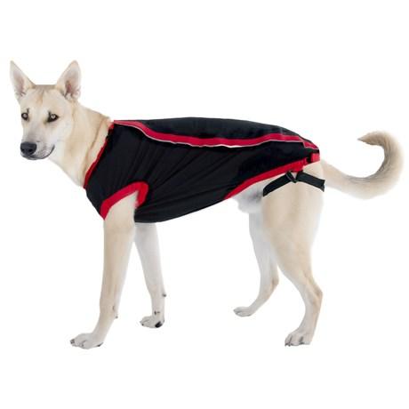 Kong Anxiety Reducing Dog Shirt