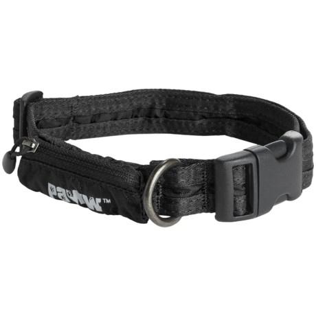 PAWW Paww Secret Agent Dog Collar - Medium