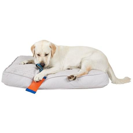 "Live Love Bark Teepee Dog Arrows Rectangle Dog Bed - Large, 27x36"""