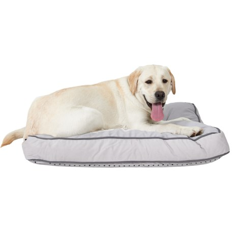 """Humane Society """"House Is Not A Home Without A Dog"""" Rectangle Dog Bed - 27x36"""""""