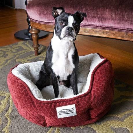 BEAUTYREST Beautyrest Subtle Seat Memory-Foam Dog Bed - 25x21""