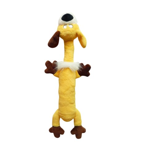 R2P PET R2P Pet Zany Bunch Zqueaker Buddies Dog Toy