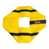 Katie's Bumpers Frequent Flyer Square Dog Toy - Fire Hose