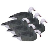 Hardcore Pro-Series Blue Goose Shell Touchdown Decoys - 6-Pack