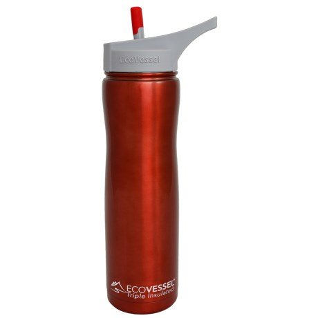 Ecovessel Summit Insulated Bottle with Straw - 24 fl.oz.