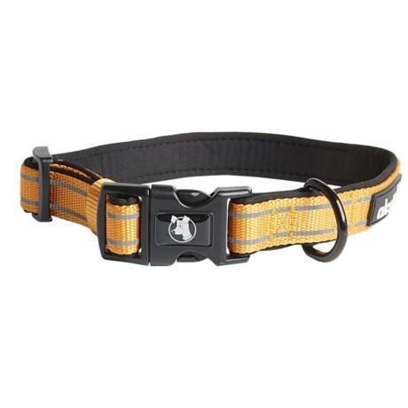 alcott Traveler Dog Collar