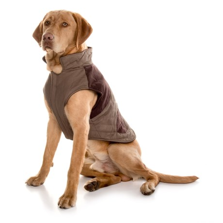 Telluride Richard Dog Jacket