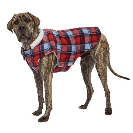 Telluride Walter Dog Jacket