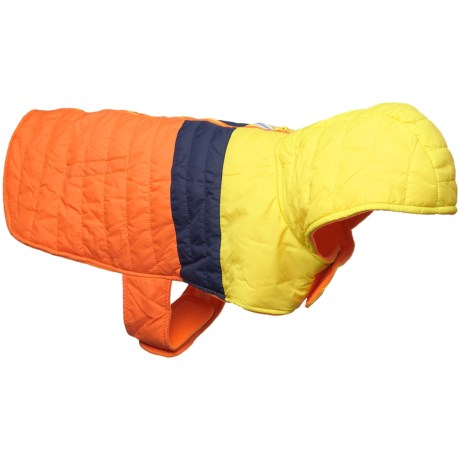 Humane Society Dax Dog Jacket - Insulated