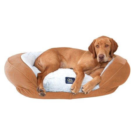 Serta Oval Couch Dog Bed - 36x27""