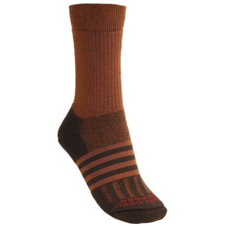 Dahlgren Midweight Hiking Socks - Merino Wool (For Women)