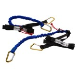 Harmony Shock Tie-Down Straps - Pair