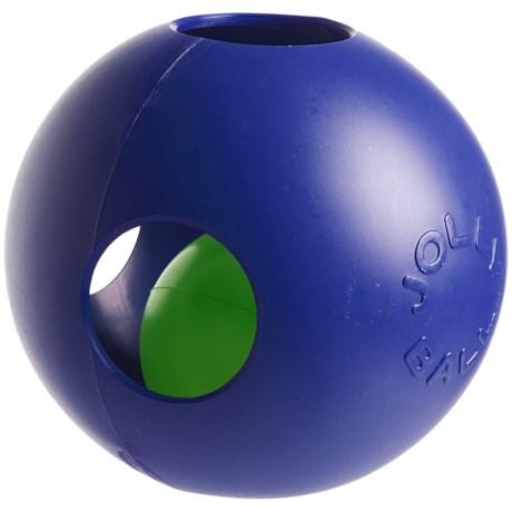 "Jolly Pets Teaser Jolly Ball Dog Toy - 6"""
