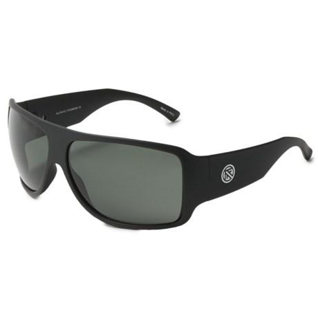 Filtrate Asphalt 2 Sunglasses - Polarized