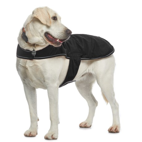Silver Paw NW-1 Dog Jacket