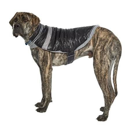 Silver Paw W-1 Dog Jacket