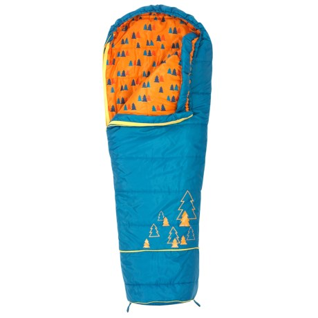 Kelty 30°F Big Dipper Sleeping Bag - Short, Mummy (For Kids)