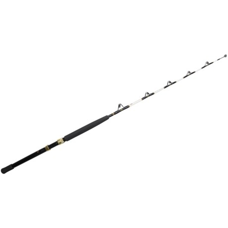 Penn Stand-Up Fishing Rod - 1-Piece, Heavy