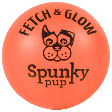 Spunky Pup Fetch and Glow Ball - Medium