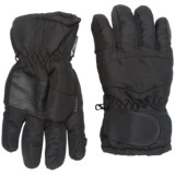 Great Northern Gloves - Insulated, Small-Medium (For Kids)