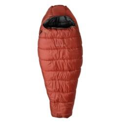 ALPS Mountaineering -20°F Echo Lake Sleeping Bag - Synthetic, Mummy