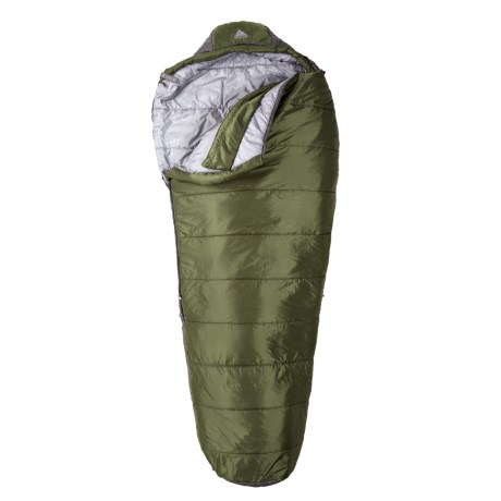 Kelty 20°F Cosmic Sleeping Bag - Synthetic, Long Mummy