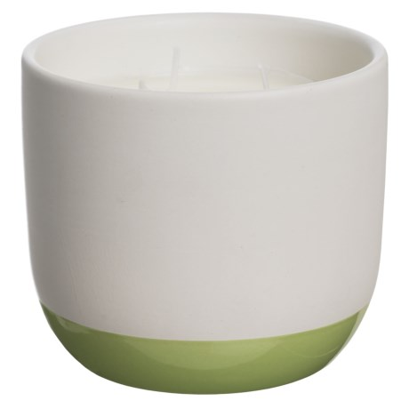 Paddywax Indigo Illustrations Green Tea and Grasses Ceramic Candle - 3-Wick, Soy Wax, 11 oz.